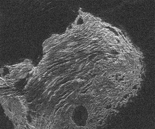 Arecibo-GBT radar image of Maxwell Montes