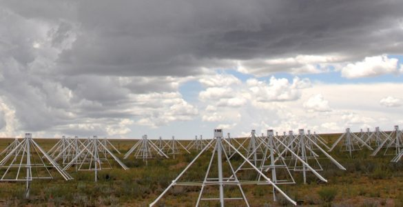 Long Wavelength Demonstrator Array