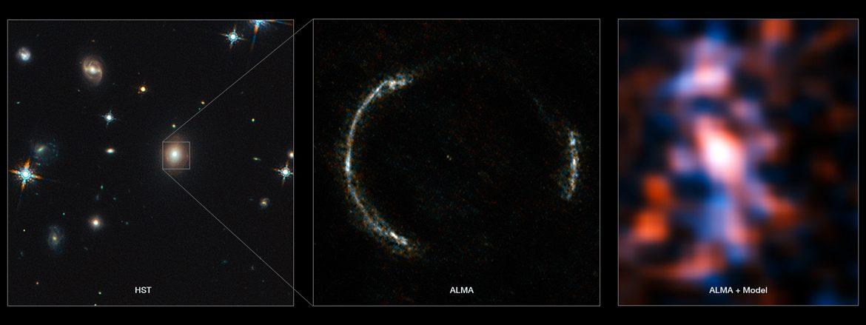 Gravitationally lensed galaxy SDP.81