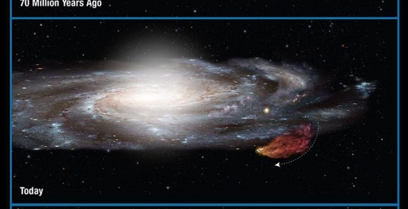 Fingerprint of Milky Way Found Far from Home in Galactic Neighbor