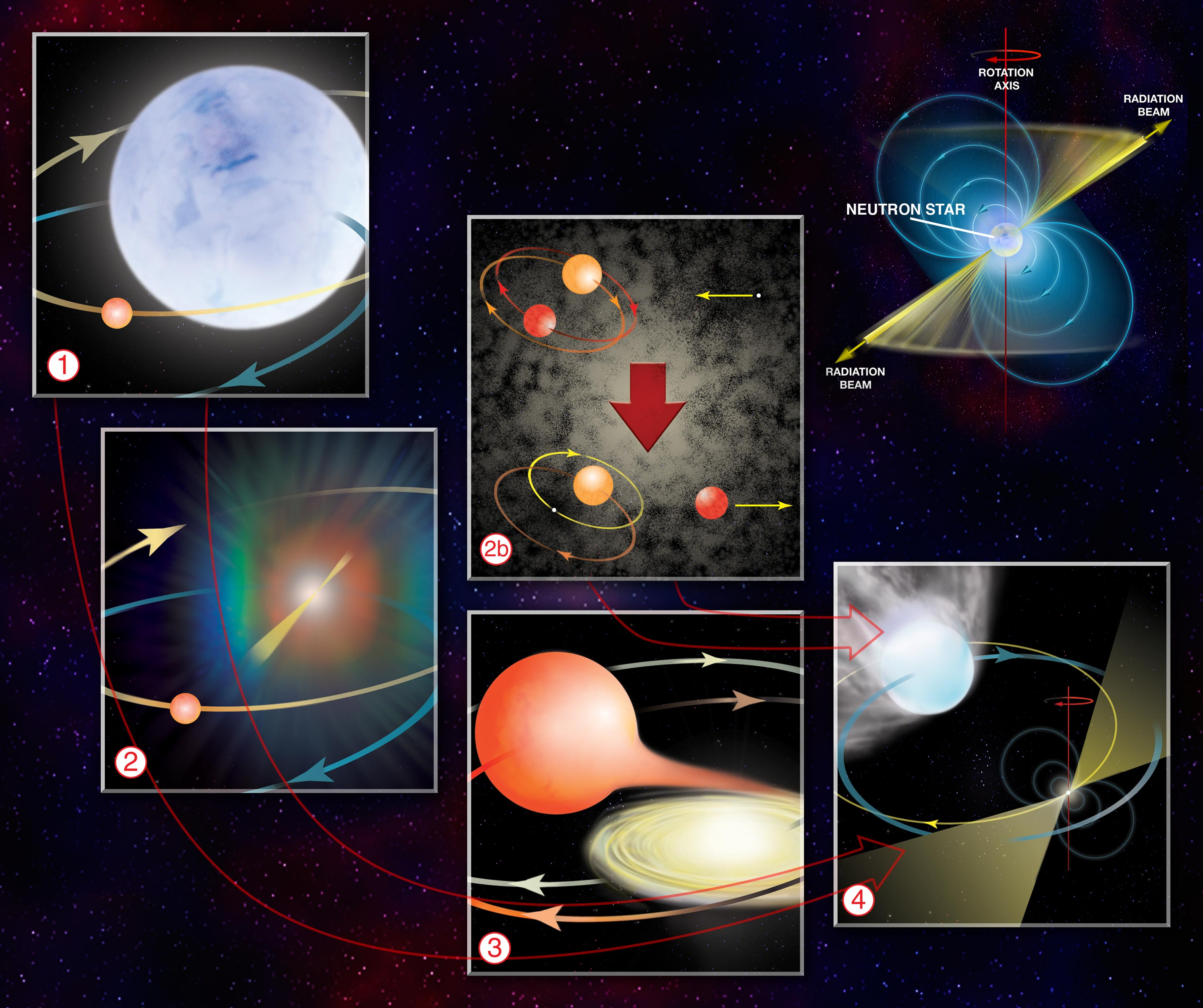 Graphic illustrating how Millisecond Pulsars are formed