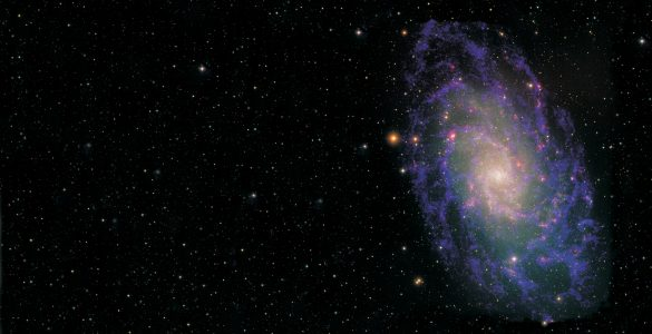 The Triangulum Galaxy in Radio and Optical
