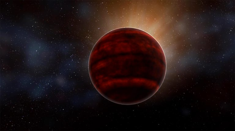 Alma red dwarf star