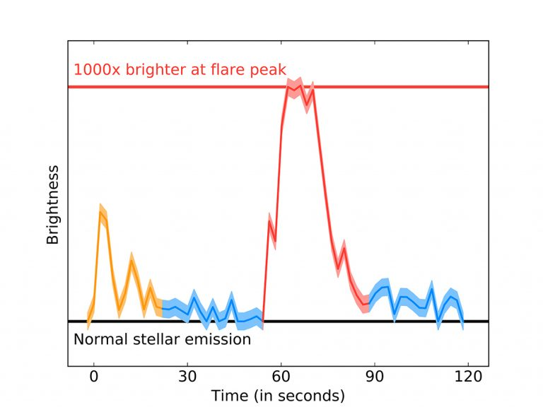 The brightness of Proxima Centauri as observed by ALMA