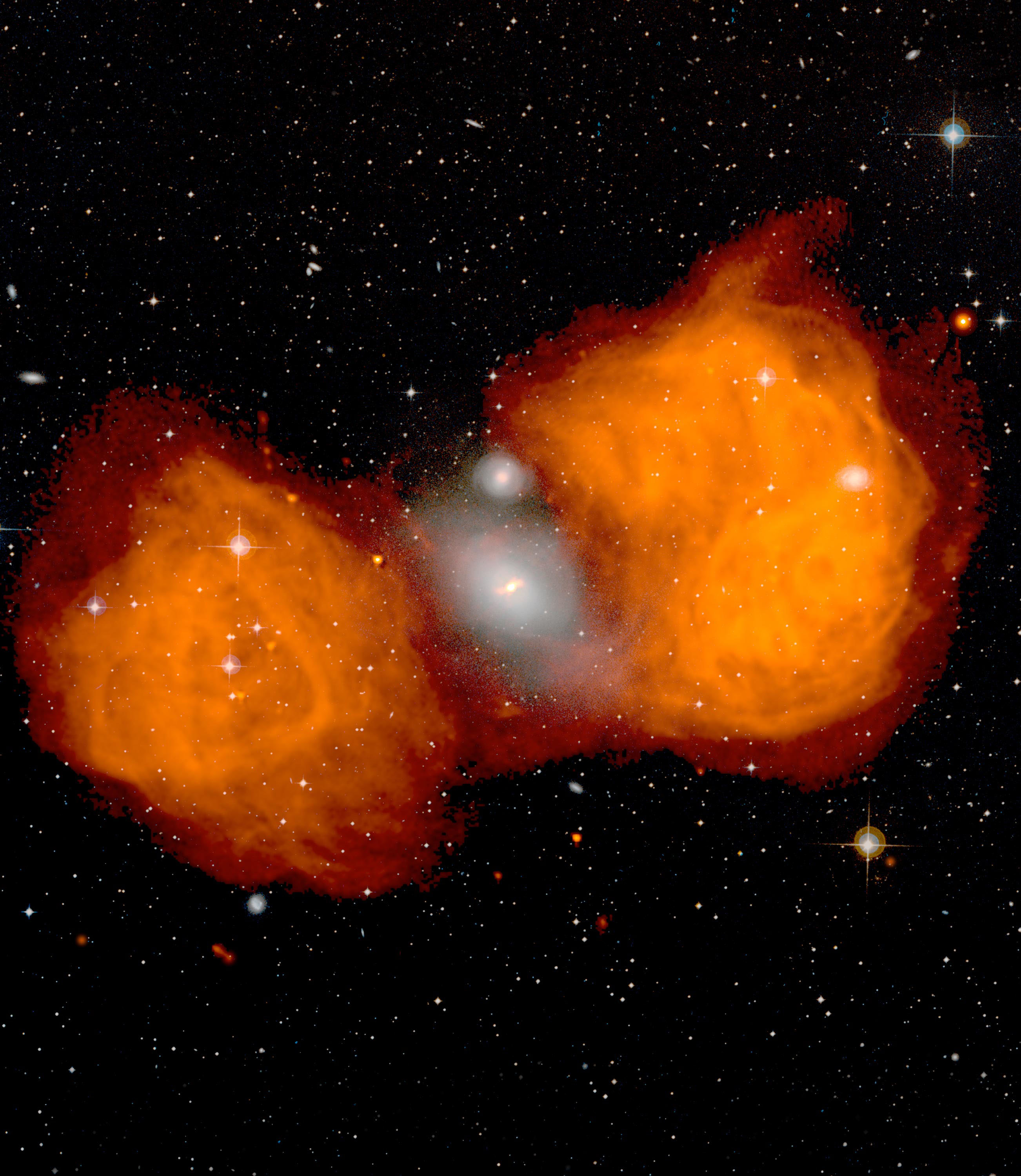 Famous Fornax Galaxy