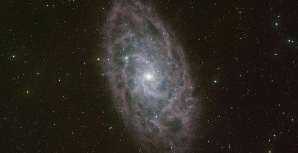 Radio Telescope Reveal the Cold Hydrogen Gas in M33