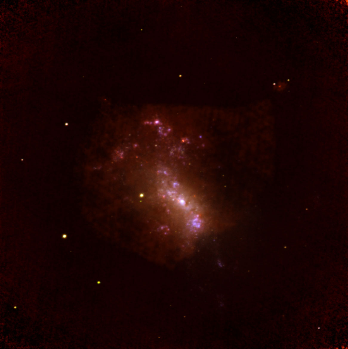 Making Stars in NGC 4449