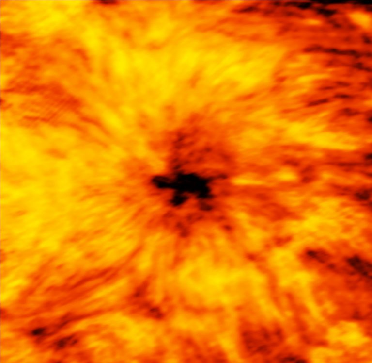 ALMA image of sunspot