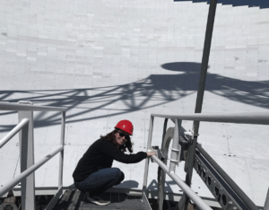 Five Jansky Fellows Look to the Future of Radio Astronomy