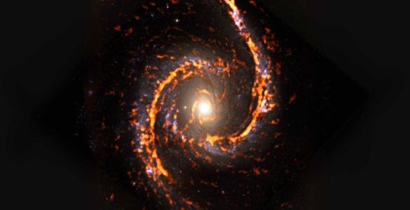 PHANGS-ALMA Survey: NGC1566
