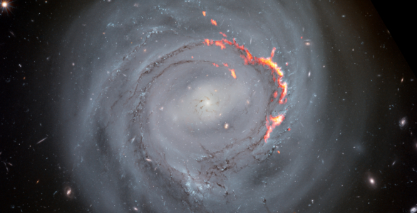 Ram Pressure Stripped Galaxy NGC4921